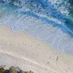 Le promesse elettorali e il rischio di rimanere spiaggiati come una balena
